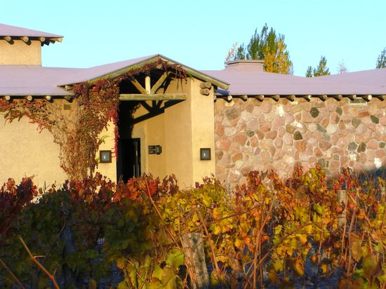 La Bourgogne : Bodega Vistalba