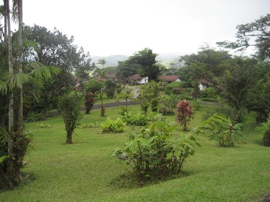 Villa Blanca Cloud Forest Hotel and Nature Reserve: View of property