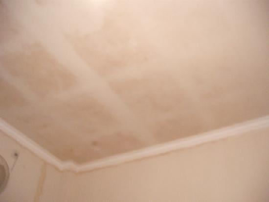Bidari Hotel Lombok: Stains On Ceiling