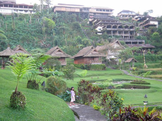 Baturiti, Indonesië: View of hotel from base of the hill (you can book an exclusive chalet here)