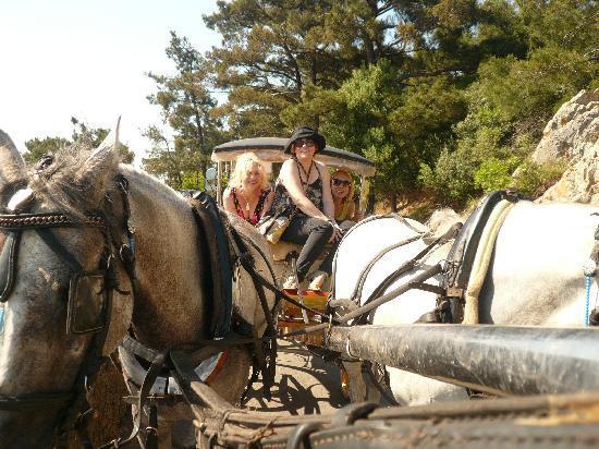 Buyukada, Turkije: 05.06.2011.
