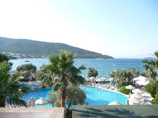Izer Hotel & Beach Club: Vue magnifique sur la piscine