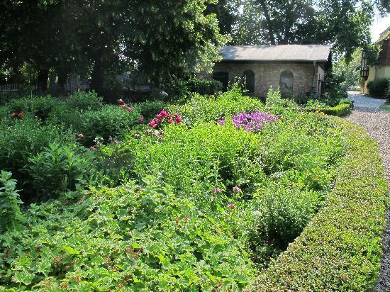 Gutshaus Solzow : Garten