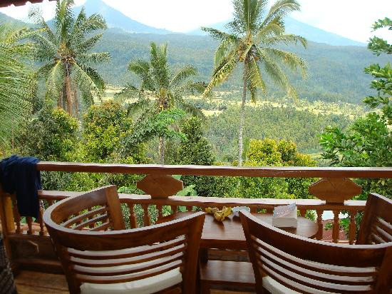 Puri Lumbung Cottages: room view of mountains