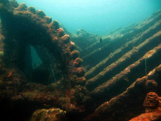 Sri Lanka Diving Tours - Trincomalee: Irrakandy shipwreck