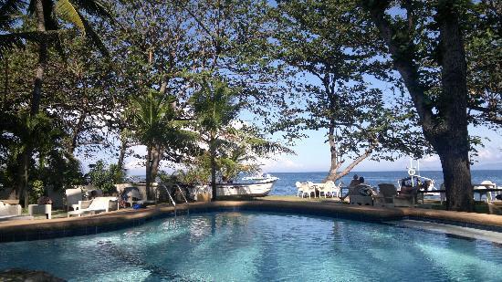 Mike's Dauin Beach Resort: The Pool