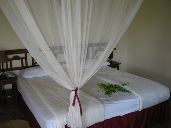 Kia Lodge – Kilimanjaro Airport : Roomy bed with mosquito netting
