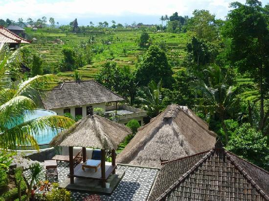 Uma Agung Villas: View from our upstairs room