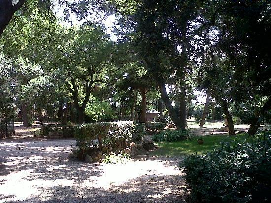 Demeure des Brousses: le parc
