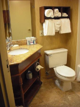 Hampton Inn Chambersburg: Bathroom