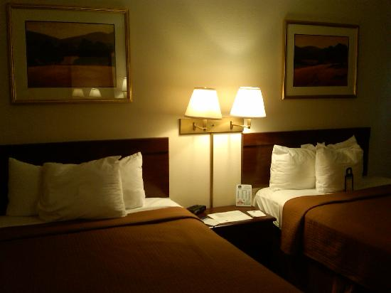 BEST WESTERN Raintree Inn: Comfortable for up to 4 people.