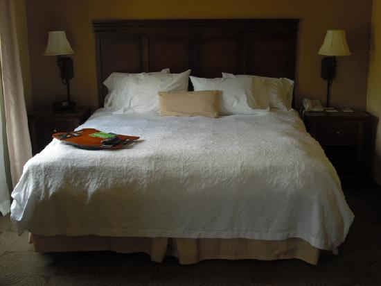 Hampton Inn & Suites Ephrata - Mountain Springs: King Bed