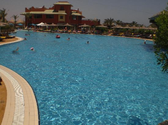 Coral Sea Holiday Village : pool