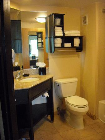 Hampton Inn Harrisburg / Grantville / Hershey: Bathroom and vanity