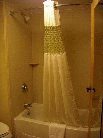 هامبتون إن هاريسبورججرانتفيل: Shower
