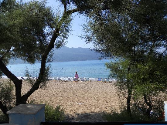 Pension Vrachos: View of Beach at Breakfast