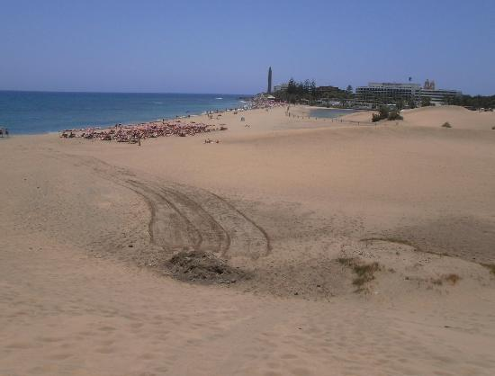 Bungalows Vista Oasis Apartments: maspalomas dunes-get the free bus