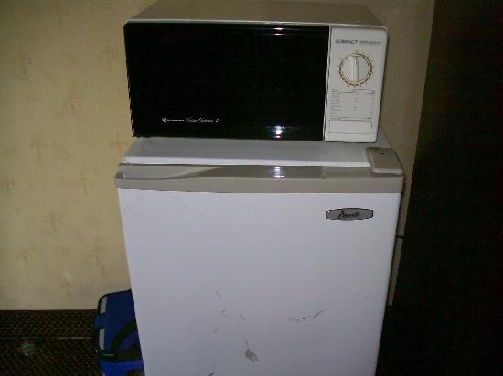 ويندام جاردن آن أربور: Kicked in fridge and microwave