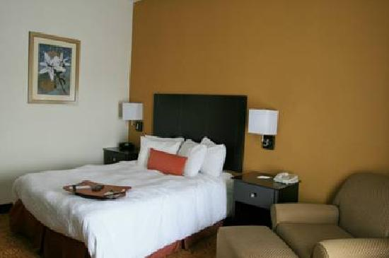 Hampton Inn and Suites Toledo-North: room