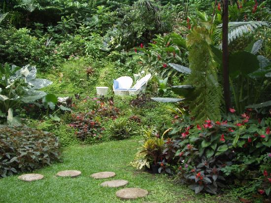 "Hunte's Gardens: A COZY NOOK AT THE BOTTOM OF THE ""GULLY"""