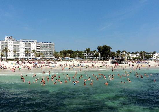 Alcudia, España: Пляж в Порт д´ Алькудия
