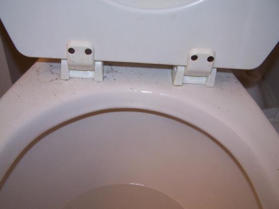 The Verandas Sanitized Toilet