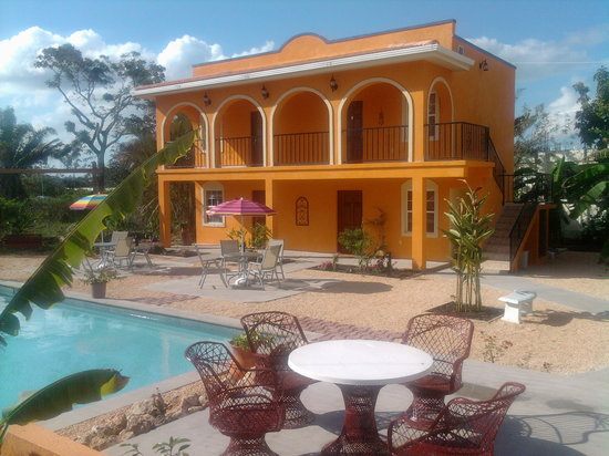 Belmopan, Belice: View of Twin Palms B & B