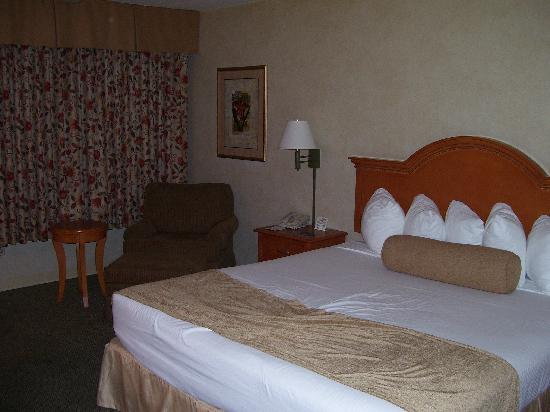 Best Western Plus Carriage Inn: Deluxe King Room