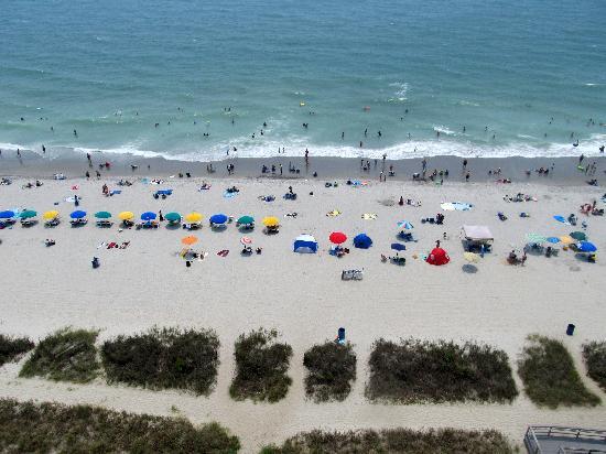 Carolinian Beach Resort : Beach view from room