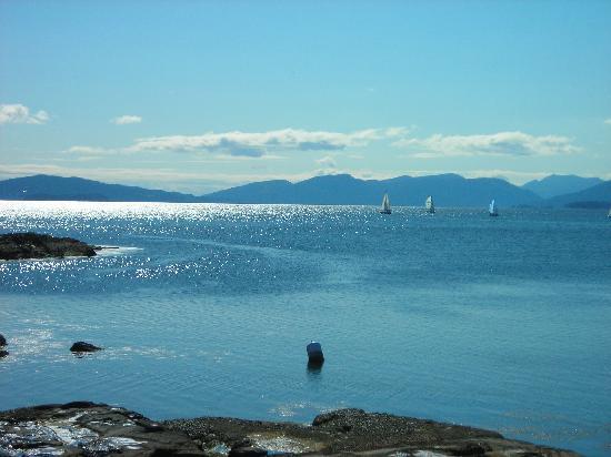 Beachside Garden B & B: Spectacular ocean scene