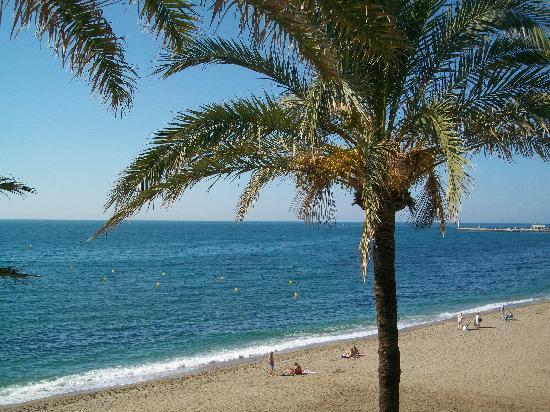 Macdonald Leila Playa Resort: View of the beach