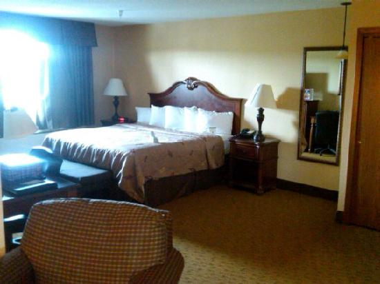 BEST WESTERN PLUS Dubuque Hotel & Conference Center: Bedroom