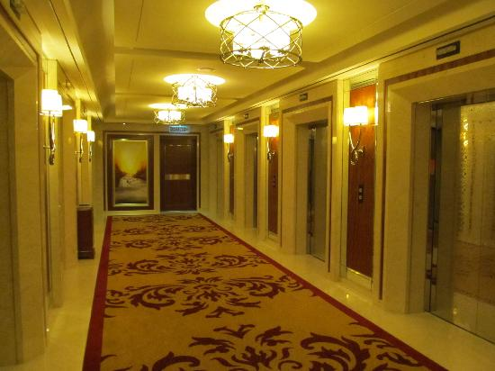 Image result for hotel lift