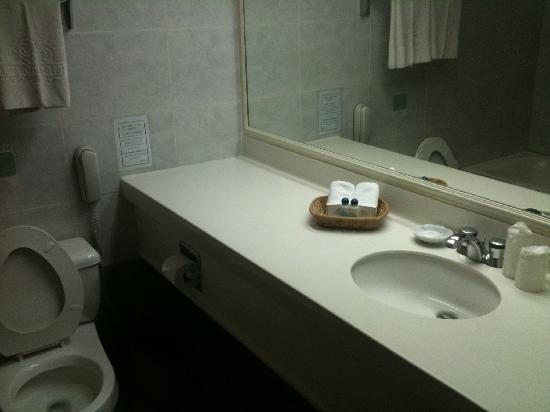 Tiara Oriental Hotel: OK clean bathroom