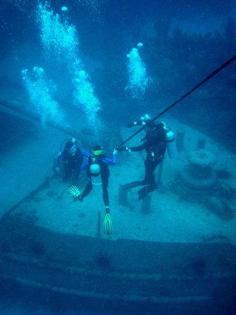 Dive Bermuda