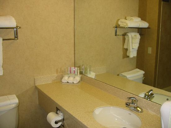Holiday Inn Express Hotel & Suites Grand Junction : Bathroom