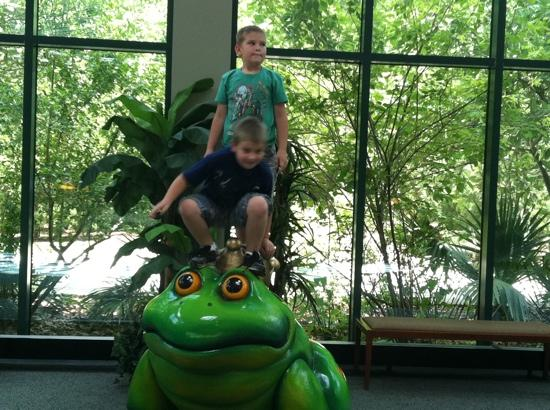 Mississippi Museum of Natural Science : The frog outside the special frog exhibit