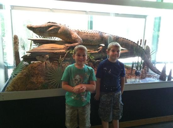 Mississippi Museum of Natural Science: in front of an exhibit case