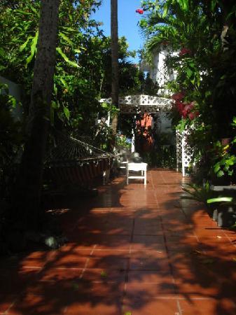 Coconut Palms Inn: Garden terrace - a nice respite from the sun