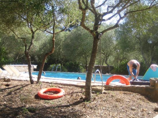 Son Josep De Baix : The pool