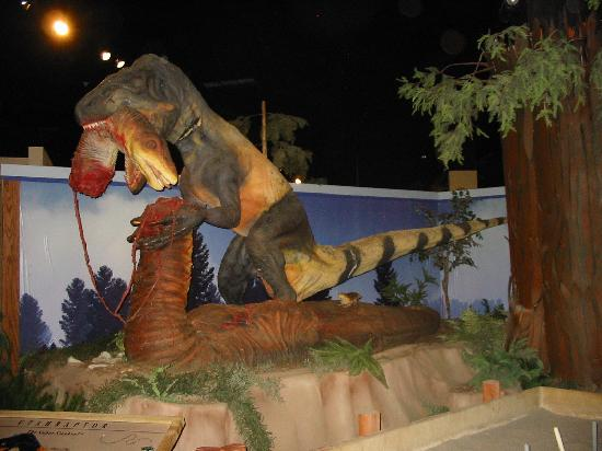 Museum of Western Colorado: Dinosaur Journey Museum : Cool!