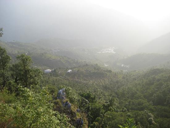 Wild Flower House: view of the valley. photo taken from nearby the hotel