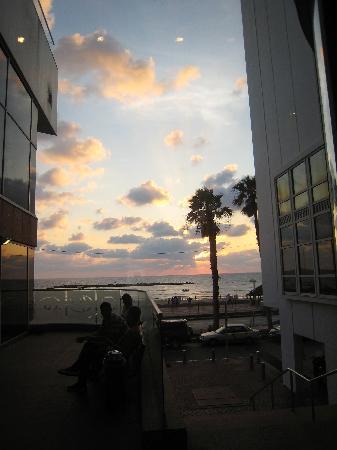 Dan Tel Aviv Hotel: sunset