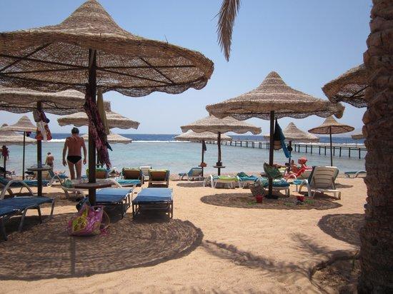 Tamra Beach: Vista dalla spiaggia