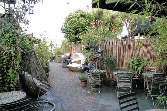 Harbour View Guest Accomodation: Garden area