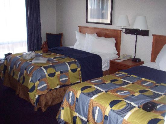 The Downtown Duluth Motel: room