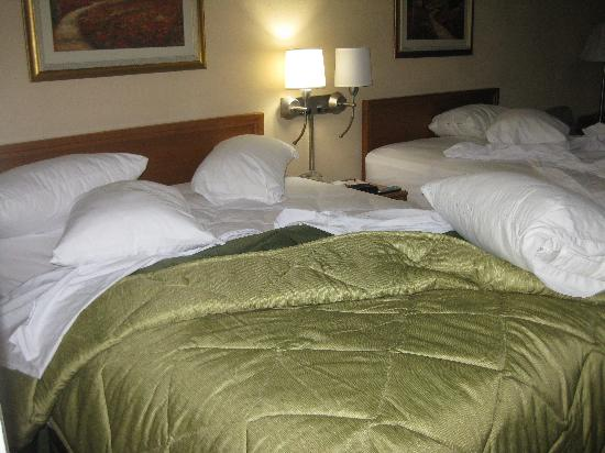Ramada Wytheville: Tall beds (sorry, we got in late; no time to photo until the AM)