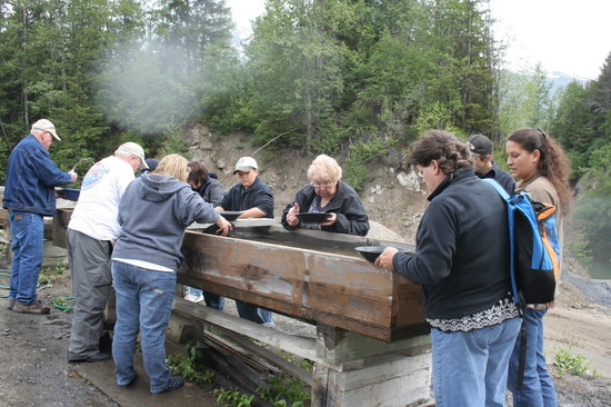 Haines, AK: Our group gold panning at  Gold Nugget Mine on Porcupine Creek