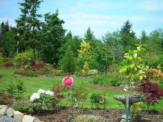 Beachside Garden B & B: Peaceful back garden