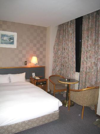 Central Hotel: Room